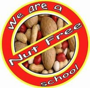 NUT SAFE SCHOOL
